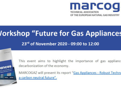 "WORKSHOP – Webinar  ""Future for Gas Appliances"""
