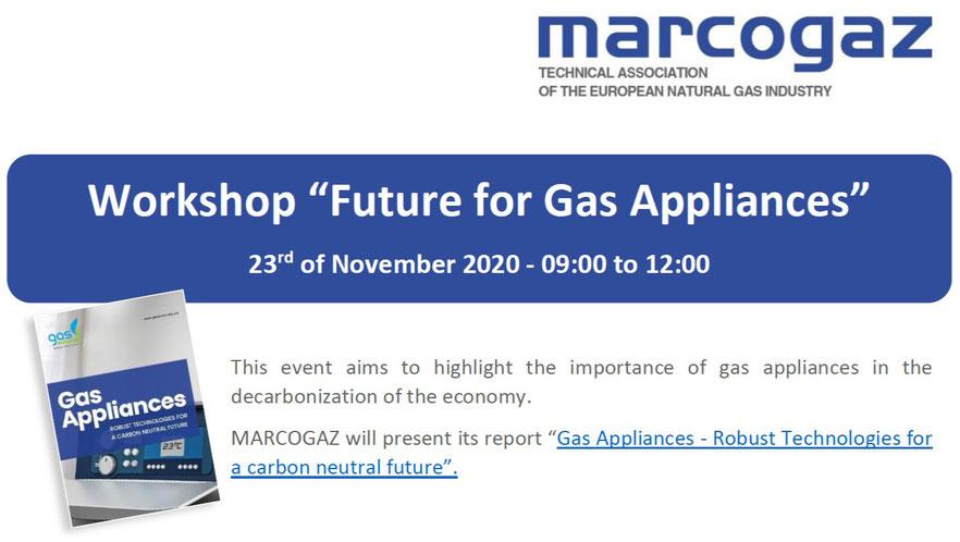 "WORKSHOP – Webinar  ""Future for Gas Appliances"""